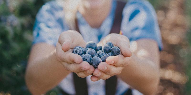 Frau hält Beeren in Hand Angebote